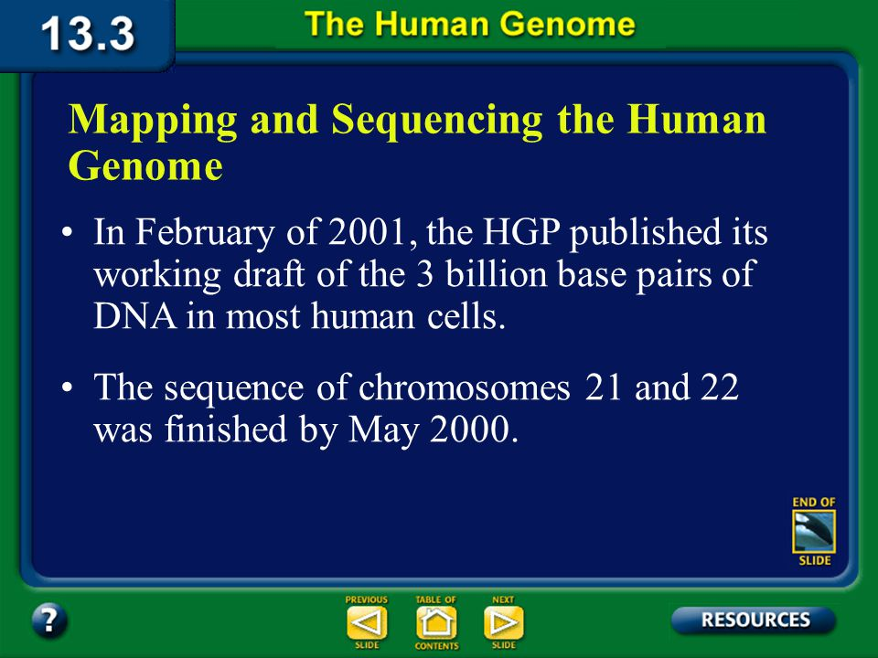 Section 13.3 Summary – pages 349 - 353 In 1990, scientists in the United States organized the Human Genome Project (HGP).