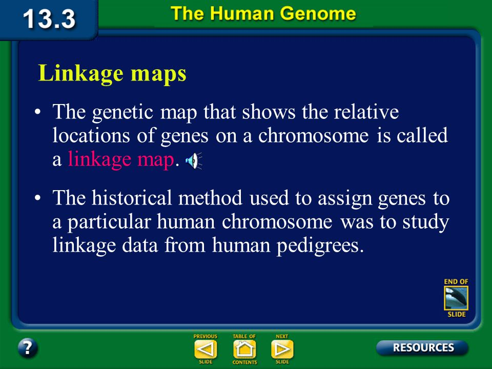 Section 13.3 Summary – pages 349 - 353 In February of 2001, the HGP published its working draft of the 3 billion base pairs of DNA in most human cells.