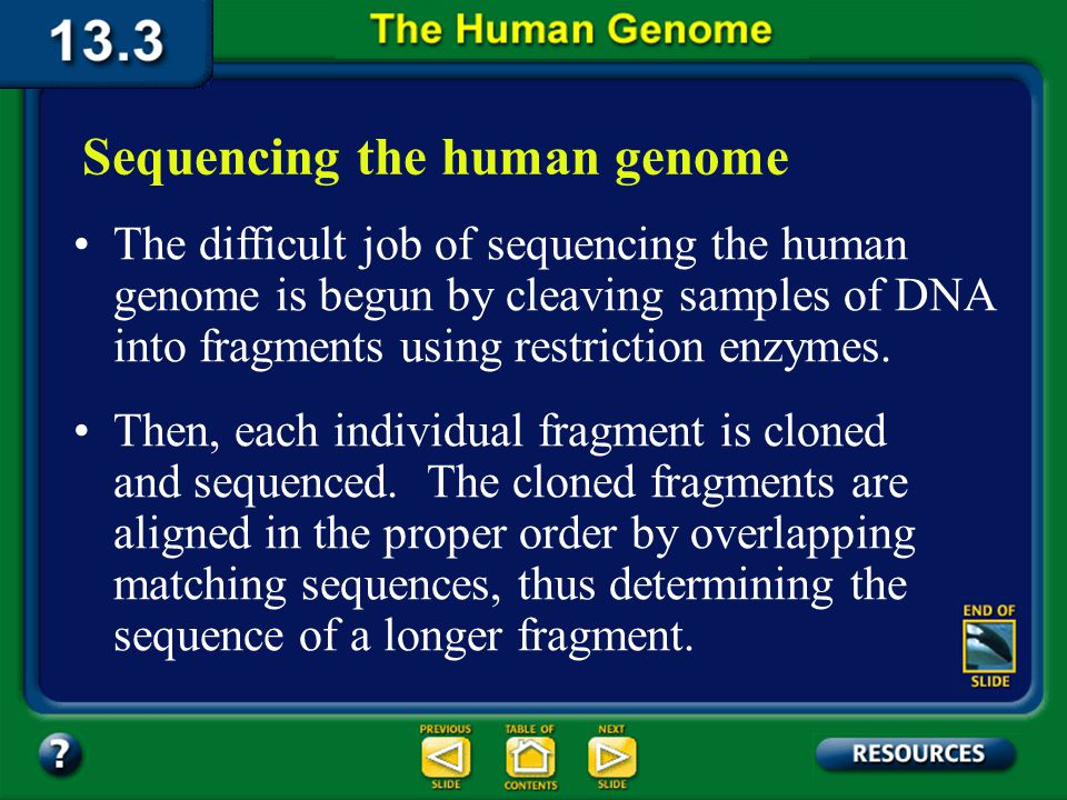 Section 13.3 Summary – pages 349 - 353 Because DNA segments that are near each other on a chromosome tend to be inherited together, markers are often used as indirect ways of tracking the inheritance pattern of a gene that has not yet been identified, but whose approximate location is known.