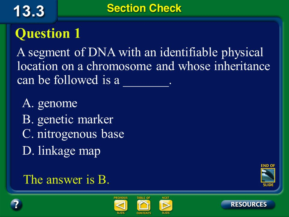 Section 13.3 Summary – pages 349 - 353 DNA fingerprinting The fragments are separated by gel electrophoresis, then further analyzed.