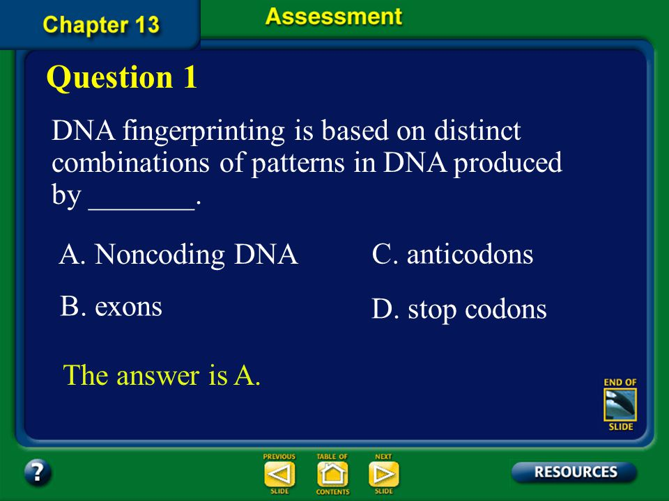 Chapter Summary – 13.3 DNA fingerprinting can be used to identify individuals.