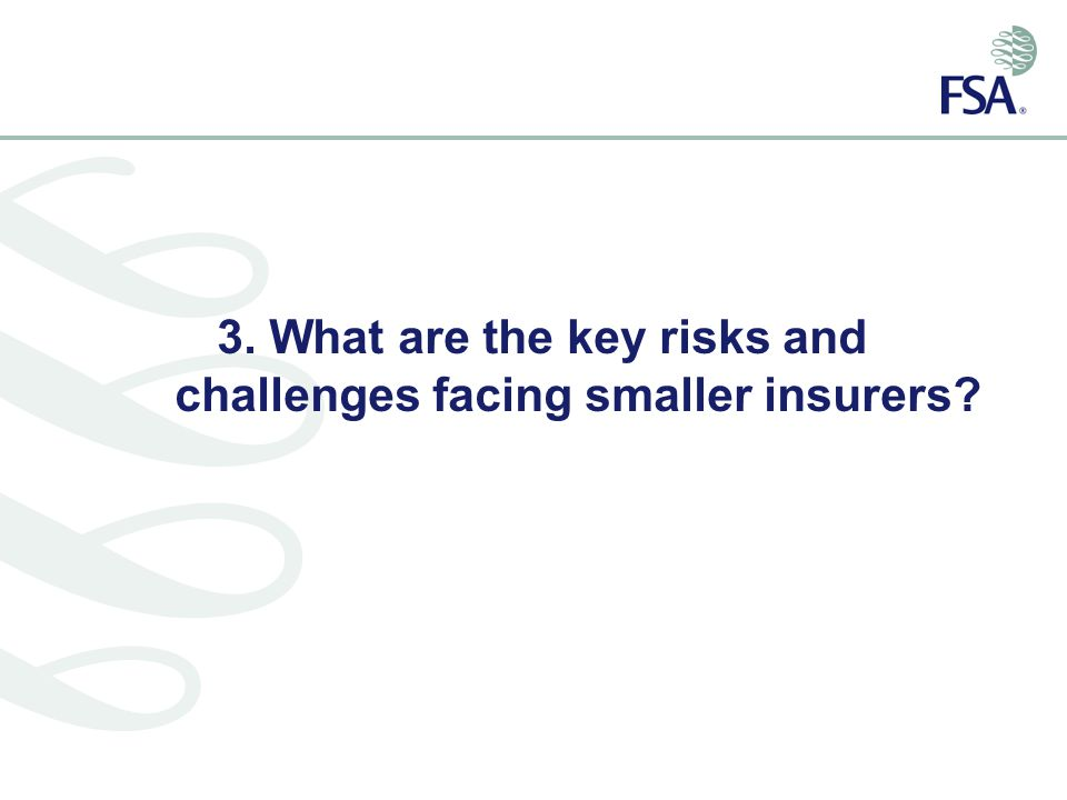 3. What are the key risks and challenges facing smaller insurers