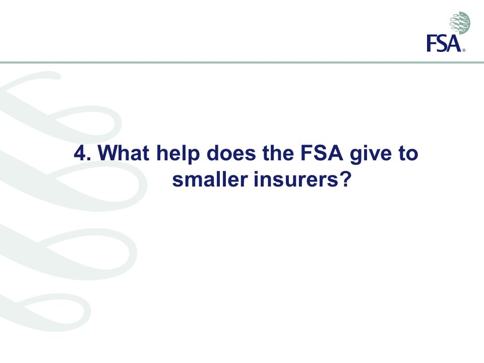 4. What help does the FSA give to smaller insurers