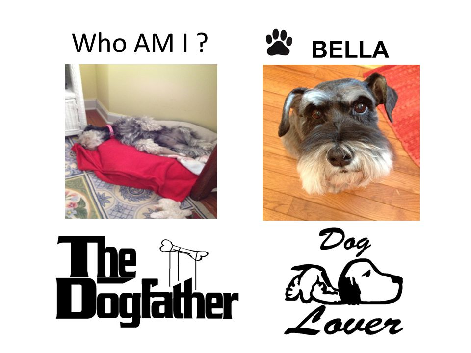 Who AM I ? BELLA