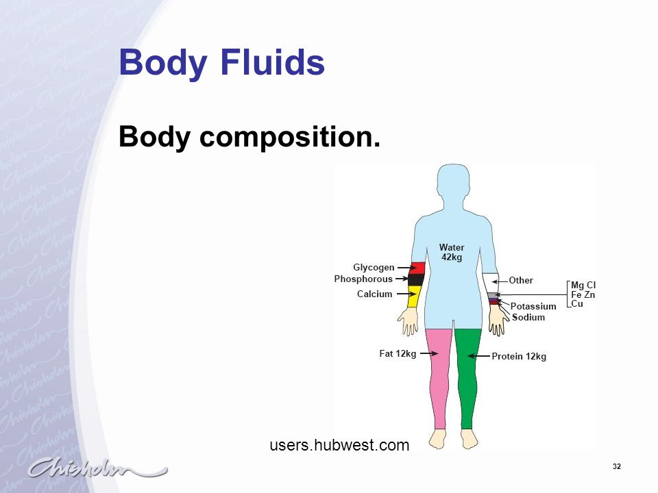 32 Body Fluids Body composition. users.hubwest.com