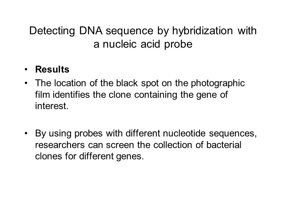 Detecting DNA sequence by hybridization with a nucleic acid probe Results The location of the black spot on the photographic film identifies the clone