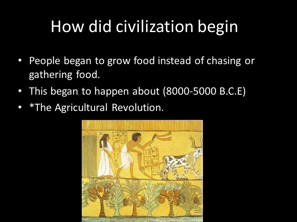How did civilization begin? People began to grow food instead of chasing or gathering food. This began to happen about (8000-5000 B.C.E) *The Agricult