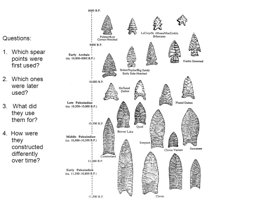 Questions: 1.Which spear points were first used.2.Which ones were later used.