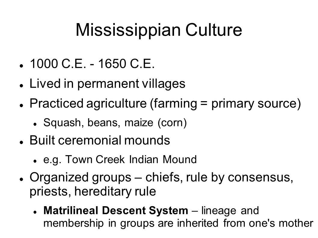Mississippian Culture 1000 C.E. - 1650 C.E. Lived in permanent villages Practiced agriculture (farming = primary source) Squash, beans, maize (corn) B