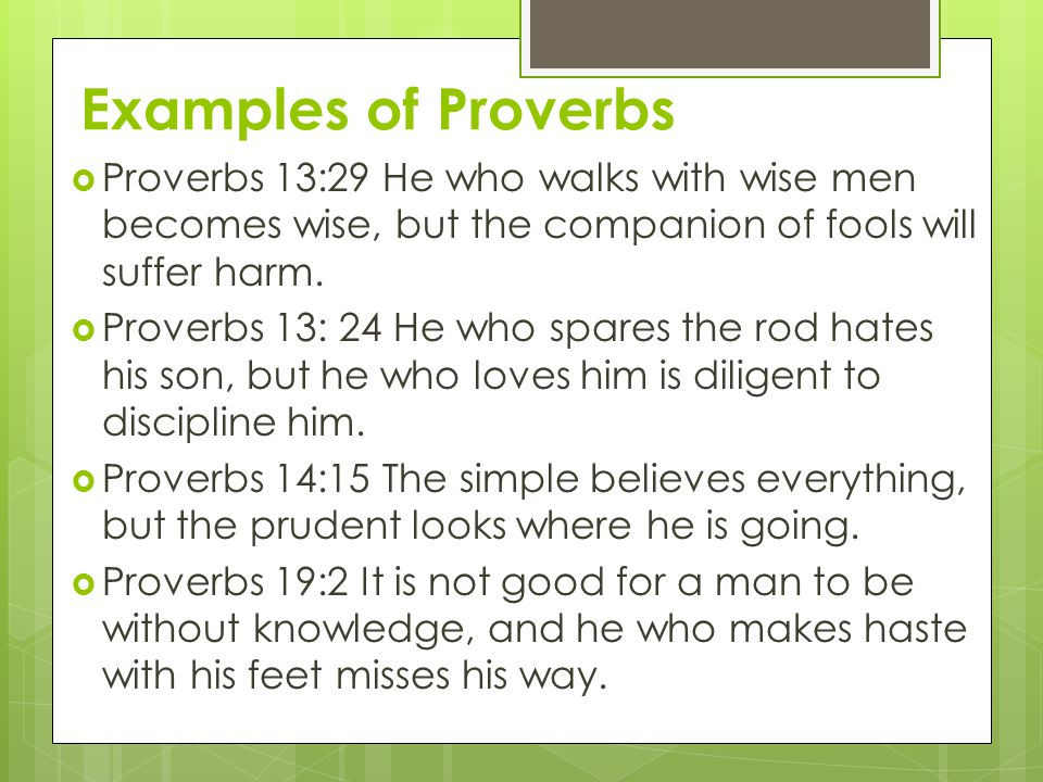  Proverbs 13:29 He who walks with wise men becomes wise, but the companion of fools will suffer harm.  Proverbs 13: 24 He who spares the rod hates h