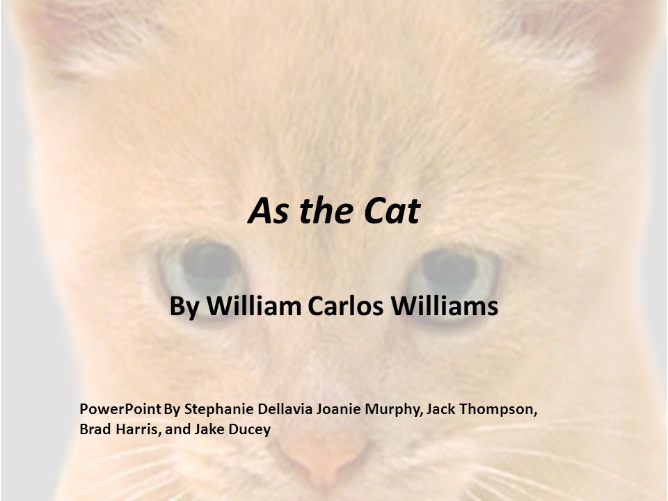As the Cat By William Carlos Williams PowerPoint By Stephanie Dellavia Joanie Murphy, Jack Thompson, Brad Harris, and Jake Ducey