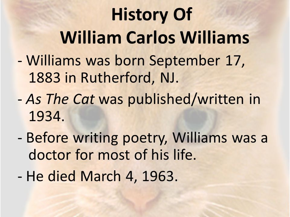 History Of William Carlos Williams - Williams was born September 17, 1883 in Rutherford, NJ. - As The Cat was published/written in 1934. - Before writ