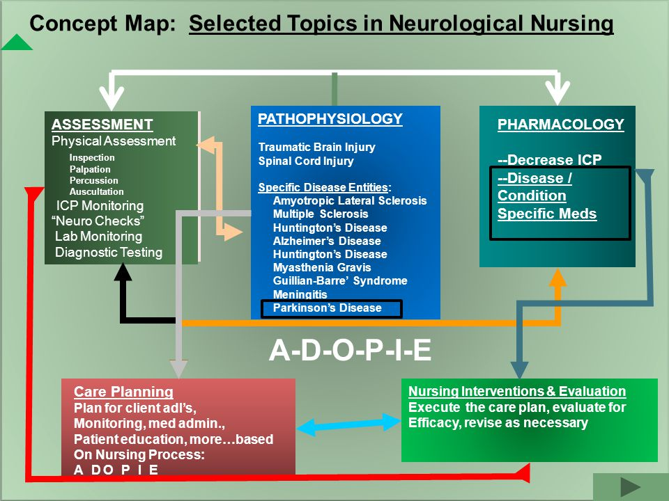 Concept Map: Selected Topics in Neurological Nursing PATHOPHYSIOLOGY Traumatic Brain Injury Spinal Cord Injury Specific Disease Entities: Amyotropic Lateral Sclerosis Multiple Sclerosis Huntington's Disease Alzheimer's Disease Huntington's Disease Myasthenia Gravis Guillian-Barre' Syndrome Meningitis Parkinson's Disease PHARMACOLOGY --Decrease ICP --Disease / Condition Specific Meds ASSESSMENT Physical Assessment Inspection Palpation Percussion Auscultation ICP Monitoring Neuro Checks Lab Monitoring Diagnostic Testing Care Planning Plan for client adl's, Monitoring, med admin., Patient education, more…based On Nursing Process: A_D O_P_I_E Nursing Interventions & Evaluation Execute the care plan, evaluate for Efficacy, revise as necessary A-D-O-P-I-E
