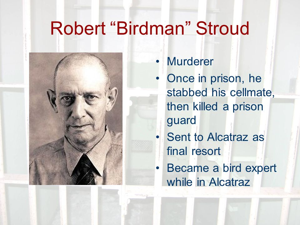 Robert Birdman Stroud Murderer Once in prison, he stabbed his cellmate, then killed a prison guard Sent to Alcatraz as final resort Became a bird expert while in Alcatraz