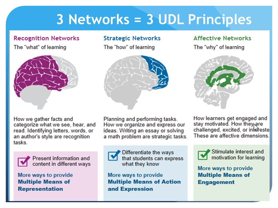 3 Networks = 3 UDL Principles