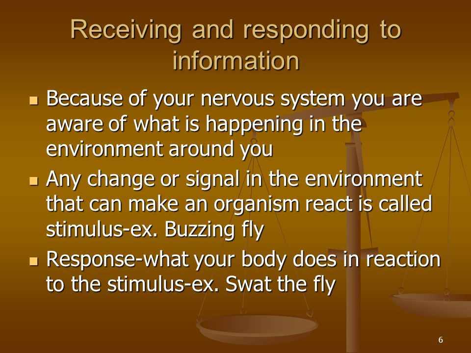 6 Receiving and responding to information Because of your nervous system you are aware of what is happening in the environment around you Because of y