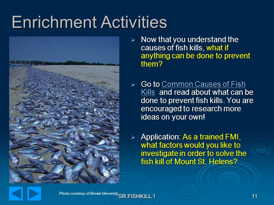 SR.FISHKILL.111 Enrichment Activities  Now that you understand the causes of fish kills, what if anything can be done to prevent them.