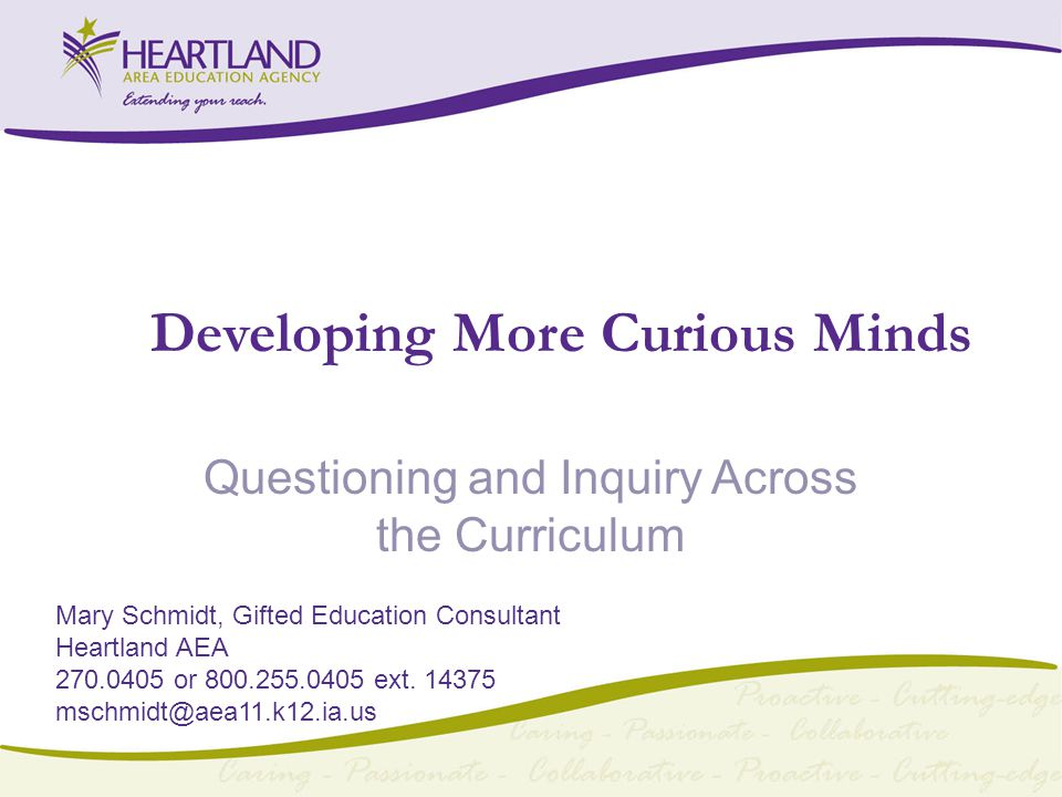 Developing More Curious Minds Questioning and Inquiry Across the Curriculum Mary Schmidt, Gifted Education Consultant Heartland AEA or ext.
