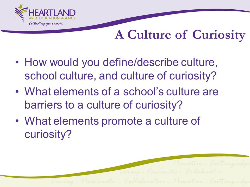 A Culture of Curiosity How would you define/describe culture, school culture, and culture of curiosity.