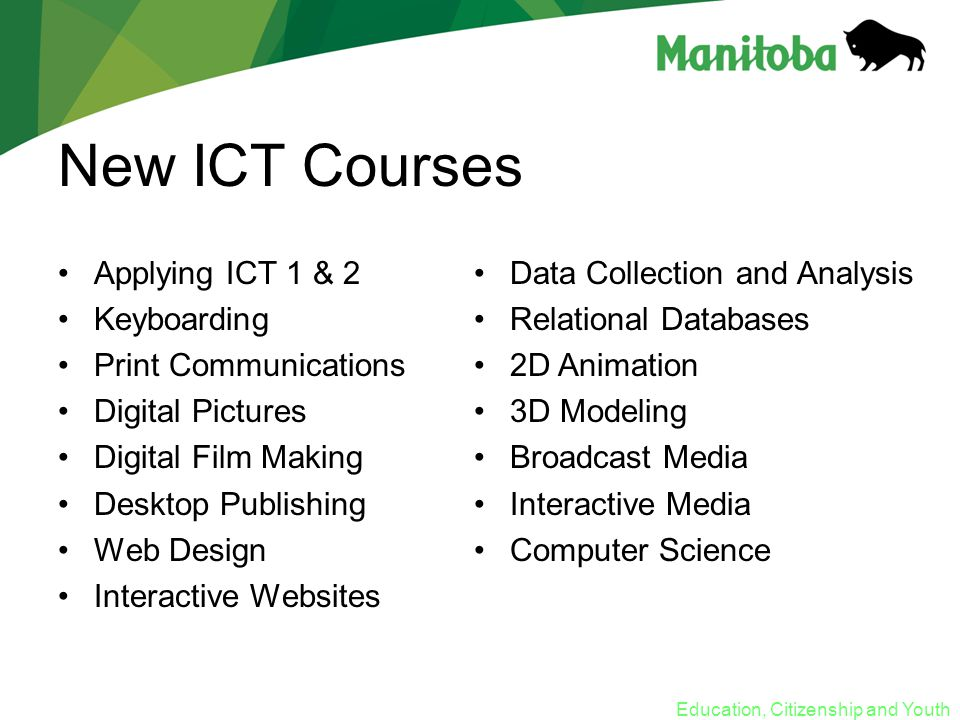 Education, Citizenship and Youth New ICT Courses Applying ICT 1 & 2 Keyboarding Print Communications Digital Pictures Digital Film Making Desktop Publishing Web Design Interactive Websites Data Collection and Analysis Relational Databases 2D Animation 3D Modeling Broadcast Media Interactive Media Computer Science