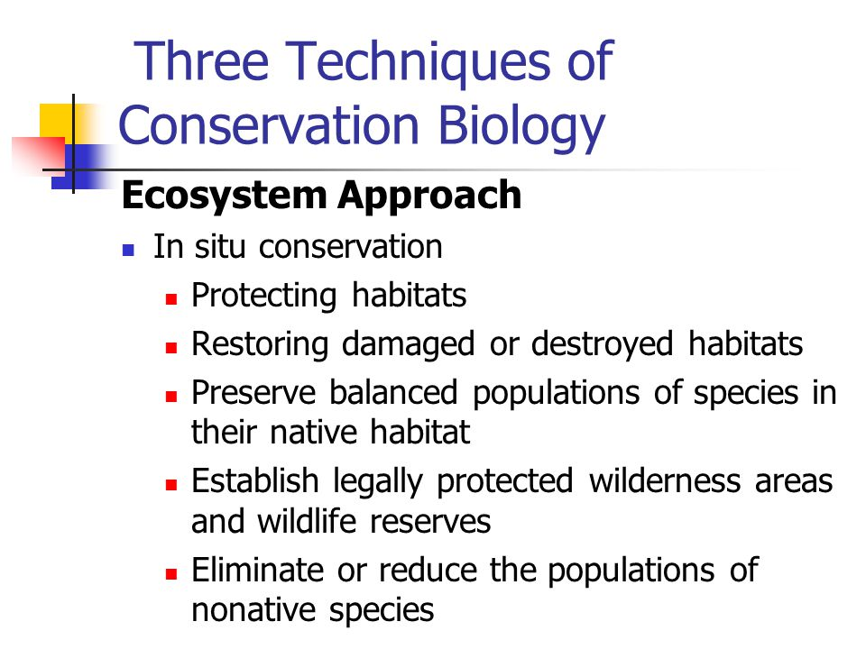 Three Techniques of Conservation Biology Ecosystem Approach In situ conservation Protecting habitats Restoring damaged or destroyed habitats Preserve
