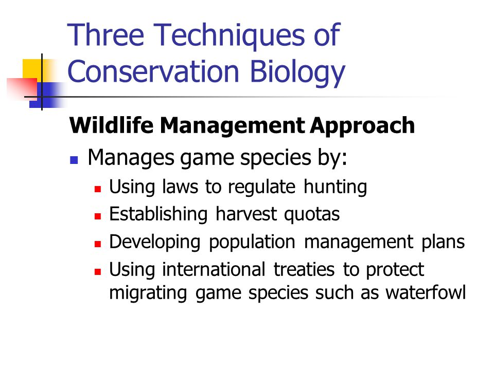 Three Techniques of Conservation Biology Wildlife Management Approach Manages game species by: Using laws to regulate hunting Establishing harvest quo