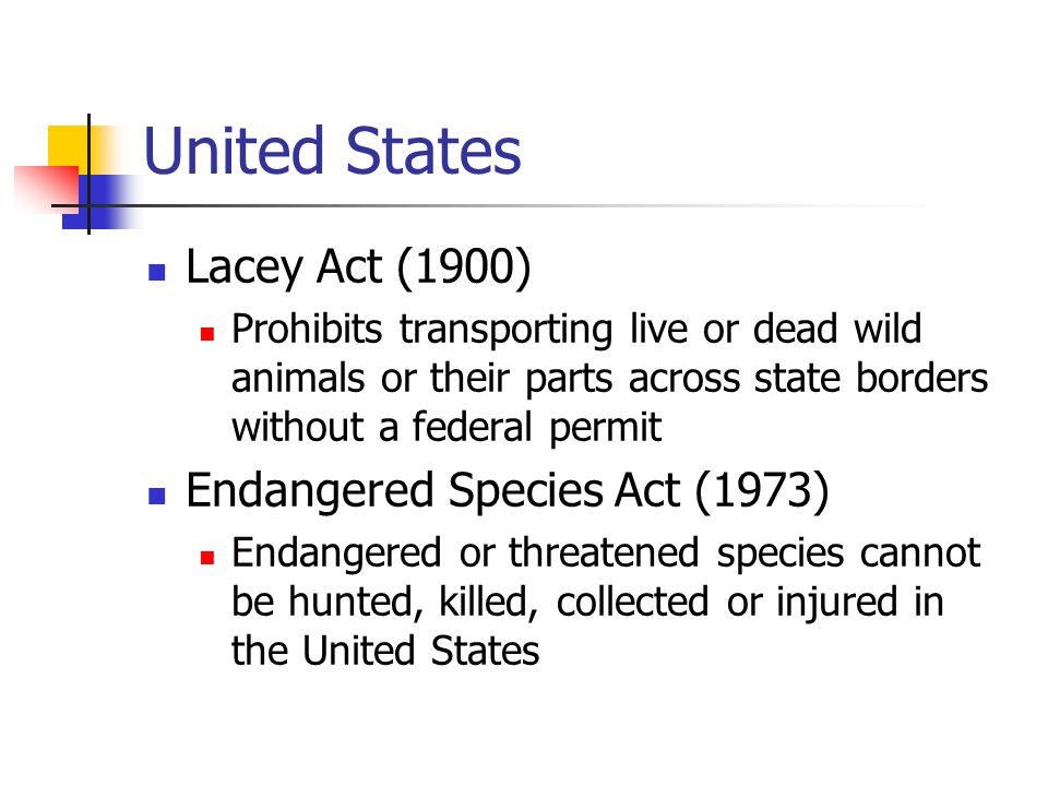 United States Lacey Act (1900) Prohibits transporting live or dead wild animals or their parts across state borders without a federal permit Endangere
