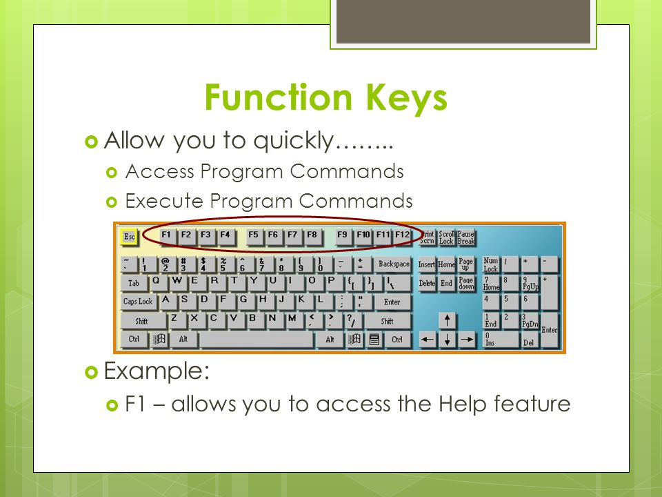 Operational Keys Escape (Esc) – allows you to exit unwanted menus and dialog boxes Tab – used to indent; moves the cursor 5 spaces on a line Caps Lock – Locks the alphabetic keys in uppercase Control (Ctrl) – used with other keys to execute (carry out) out commands Shift – Used to capitalize alphabetic keys and type symbol keys Alternate (Alt) – used with other keys to access commands on the menu bar Enter – used to move the cursor down to the next line Delete – deletes text directly in front of (to the right of) the cursor Arrow keys – move the cursor in the direction of the arrow, one character at a time End – moves the cursor to the end of a line Page Down – moves one screen below the current cursor position Backspace – deletes text to the left of (behind) the cursor Insert – allows text to be inserted within a line of text Home – moves the cursor to the beginning of a line Page Up – moves one screen above the current cursor position Num Lock – locks the numbers of the numeric keypad