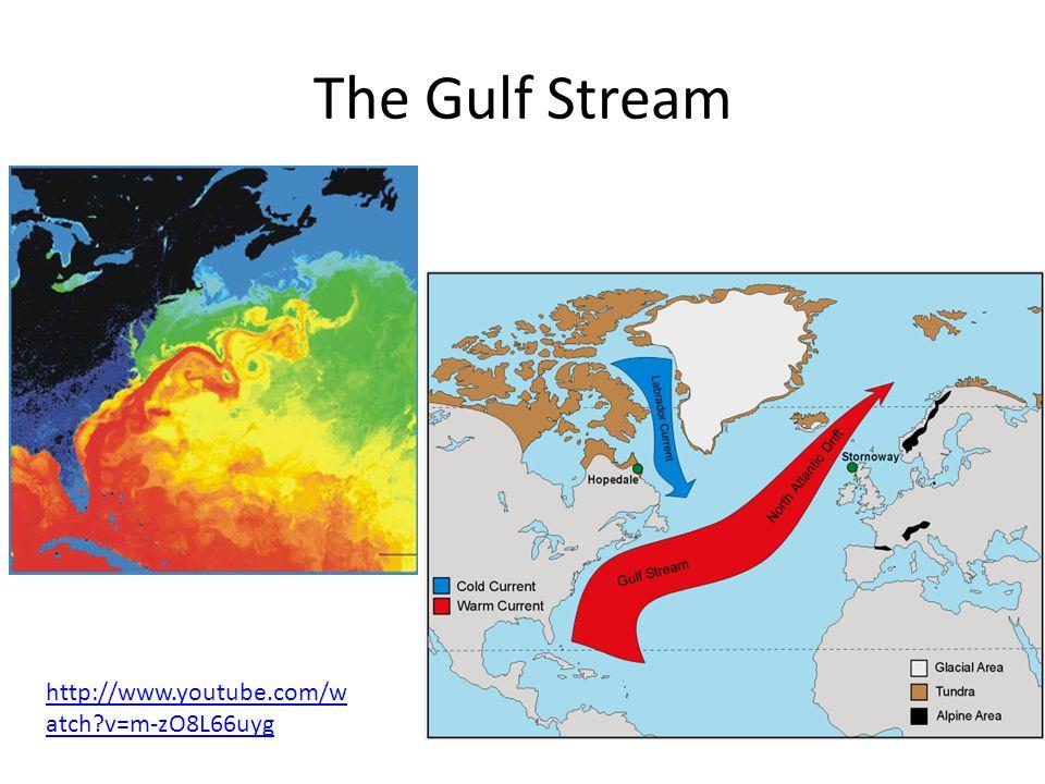 The Gulf Stream http://www.youtube.com/w atch?v=m-zO8L66uyg