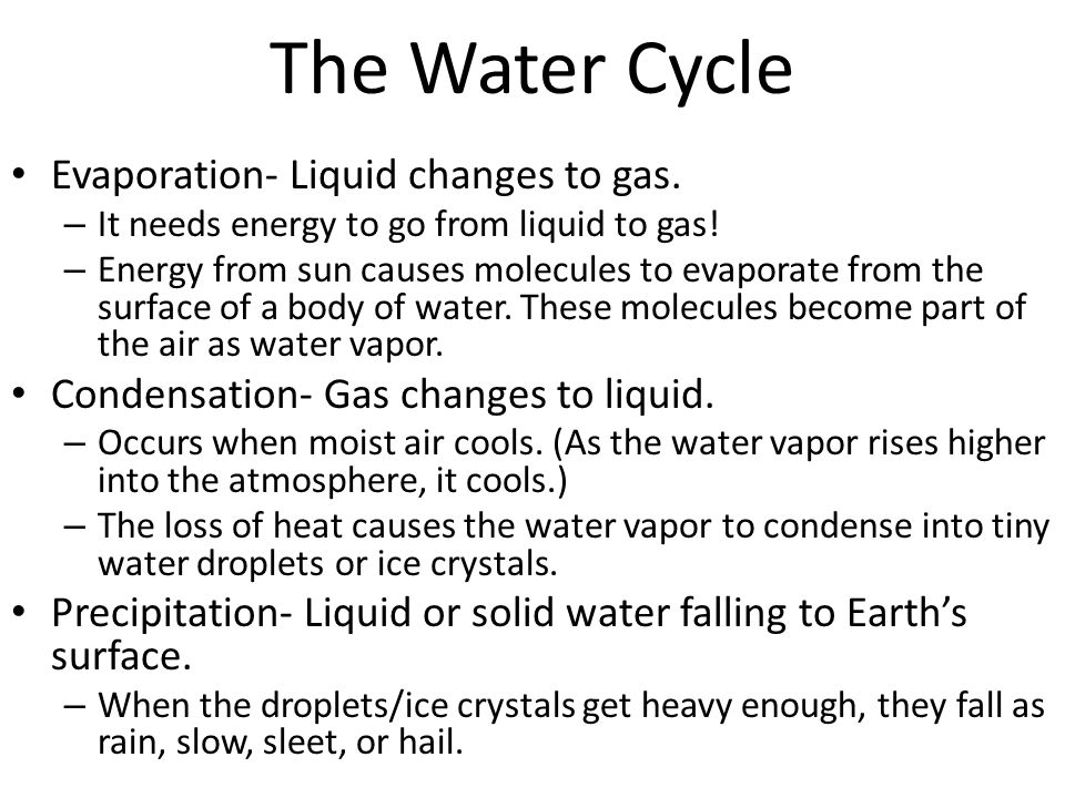 The Water Cycle Evaporation- Liquid changes to gas. – It needs energy to go from liquid to gas! – Energy from sun causes molecules to evaporate from t