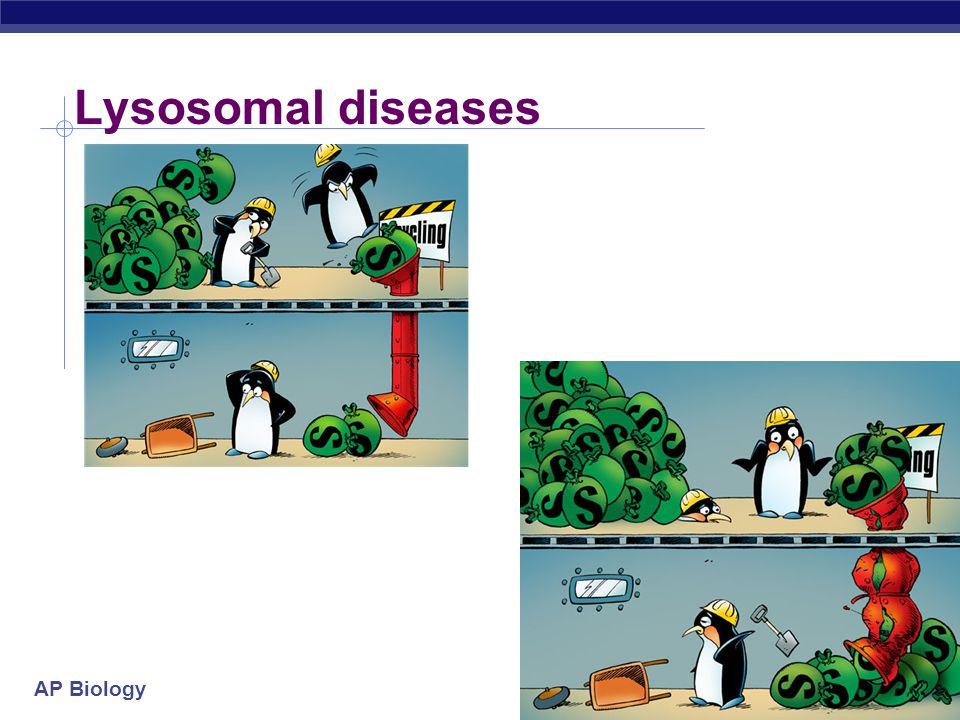 AP Biology Lysosomal diseases