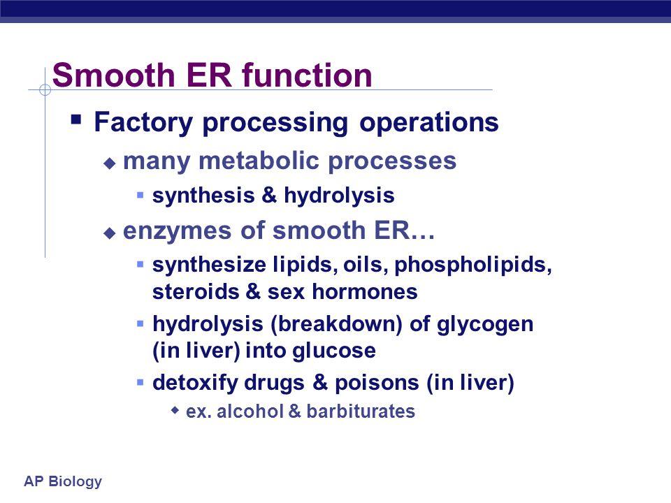 AP Biology 2005- 2006 syndactyly Fetal development 15 weeks 6 weeks