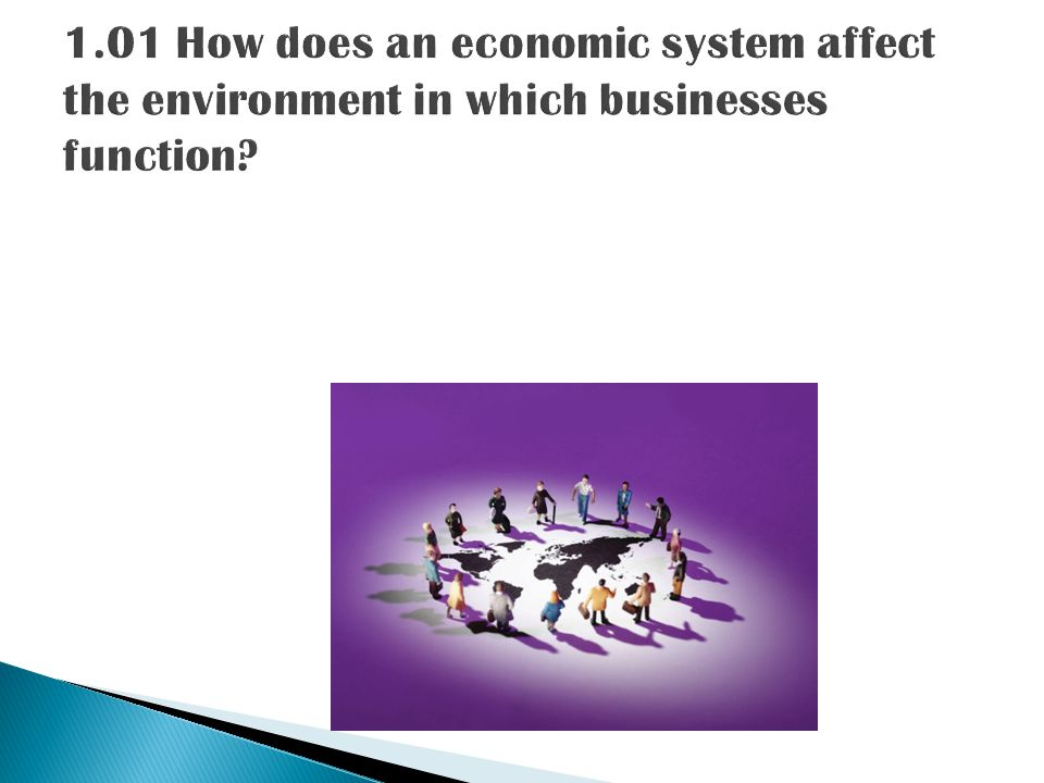1.01 How does an economic system affect the environment in which businesses function