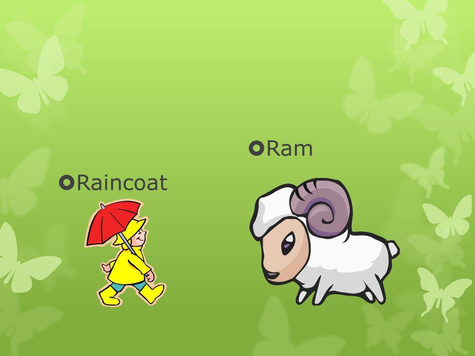  Raincoat  Ram