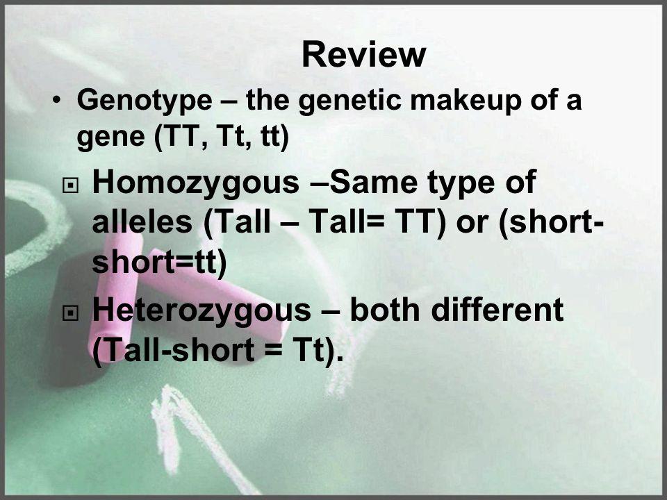 Review Genotype – the genetic makeup of a gene (TT, Tt, tt)  Homozygous –Same type of alleles (Tall – Tall= TT) or (short- short=tt)  Heterozygous – both different (Tall-short = Tt).