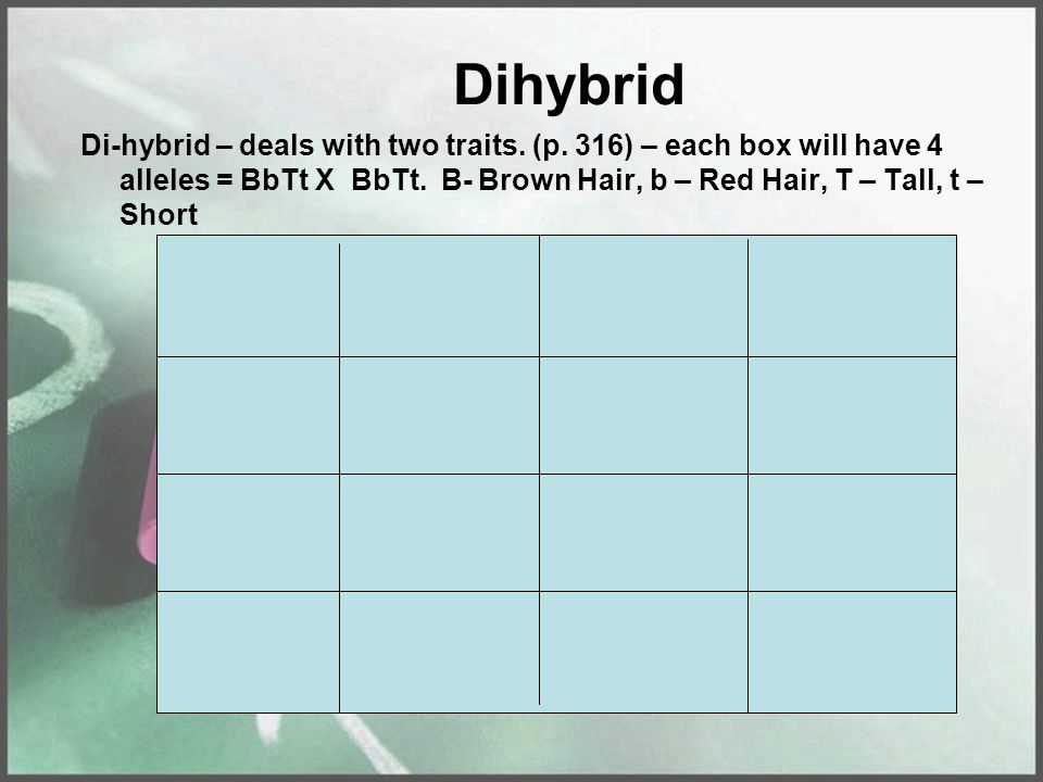 Dihybrid Di-hybrid – deals with two traits. (p. 316) – each box will have 4 alleles = BbTt X BbTt.