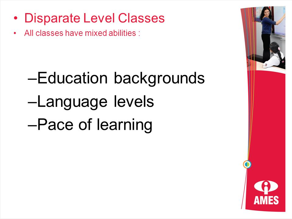 Disparate Level Classes All classes have mixed abilities : –Education backgrounds –Language levels –Pace of learning