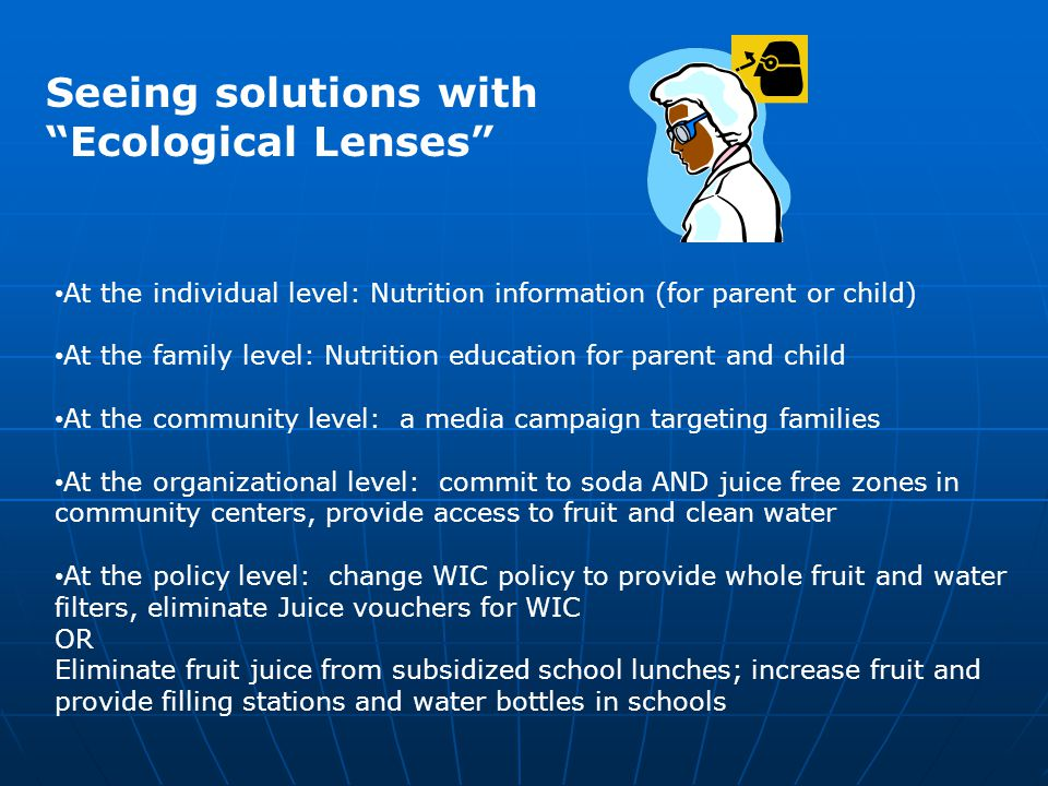 """Seeing solutions with """"Ecological Lenses"""" At the individual level: Nutrition information (for parent or child) At the family level: Nutrition educatio"""