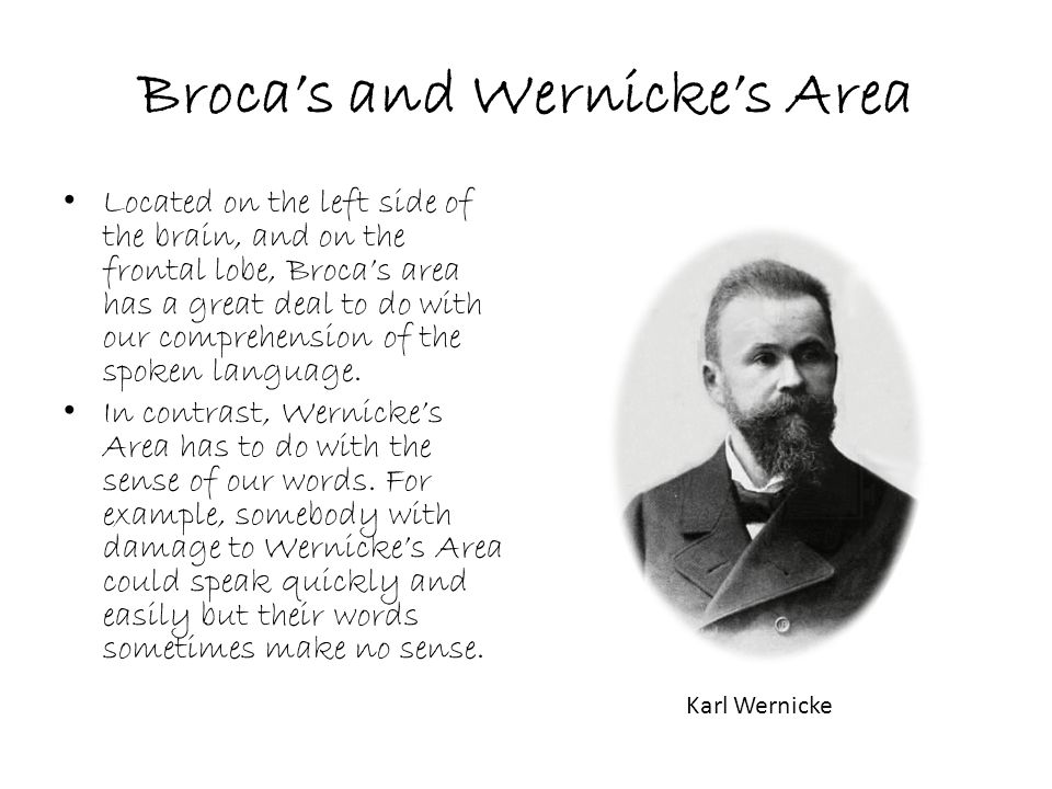 Broca's and Wernicke's Area Located on the left side of the brain, and on the frontal lobe, Broca's area has a great deal to do with our comprehension of the spoken language.