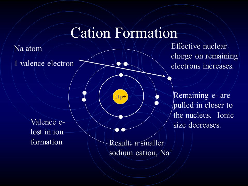Ionic Radius Cations are always smaller than the original atom. The entire outer PEL is removed during ionization. Conversely, anions are always large