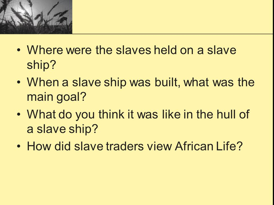 Where were the slaves held on a slave ship.When a slave ship was built, what was the main goal.