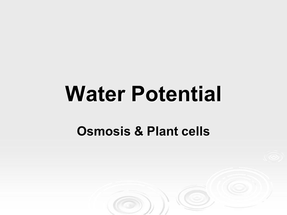 Water Potential Osmosis & Plant cells