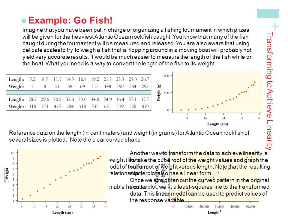 + Example: Go Fish! Transforming to Achieve Linearity Imagine that you have been put in charge of organizing a fishing tournament in which prizes will