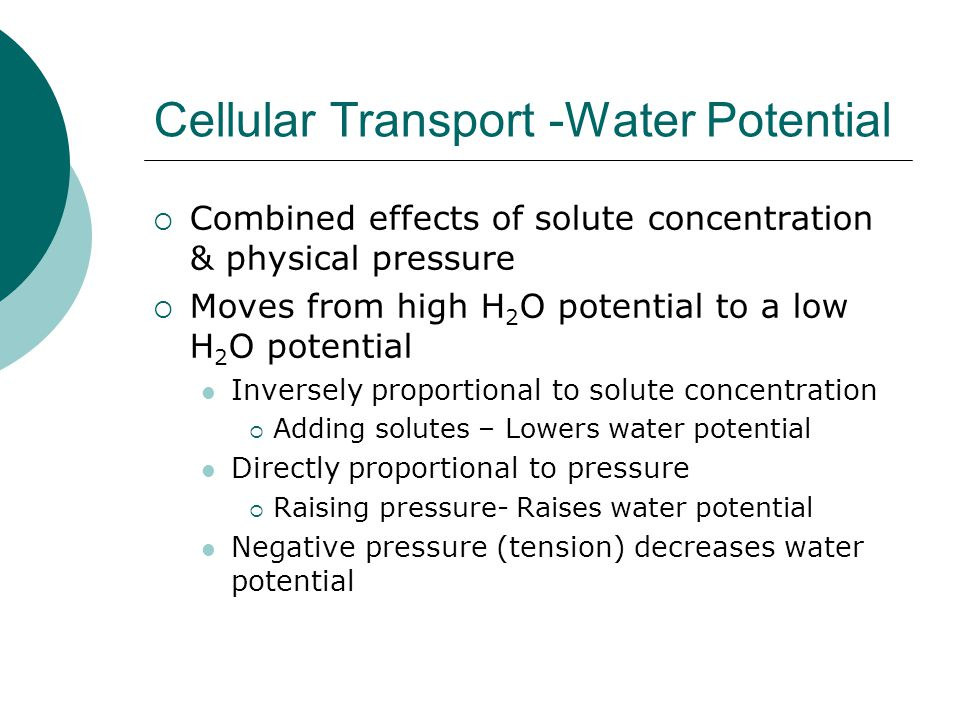 Cellular Transport -Water Potential  Combined effects of solute concentration & physical pressure  Moves from high H 2 O potential to a low H 2 O po