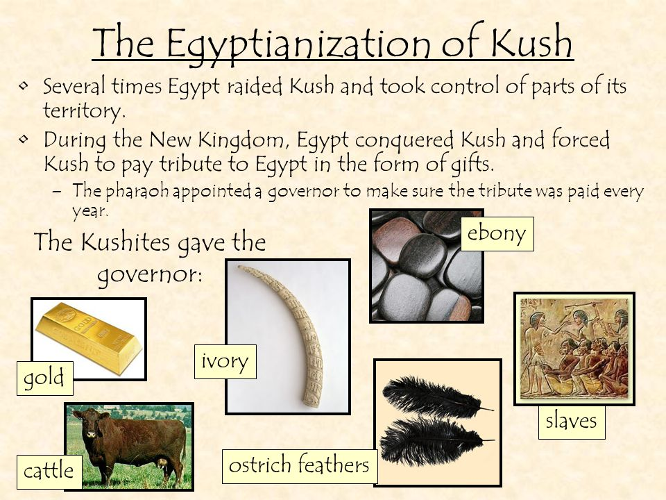 While Kush was under Egypt's control, its society became Egyptianized. The Egyptianization of Kush Kushites spoke and wrote in Egyptian.