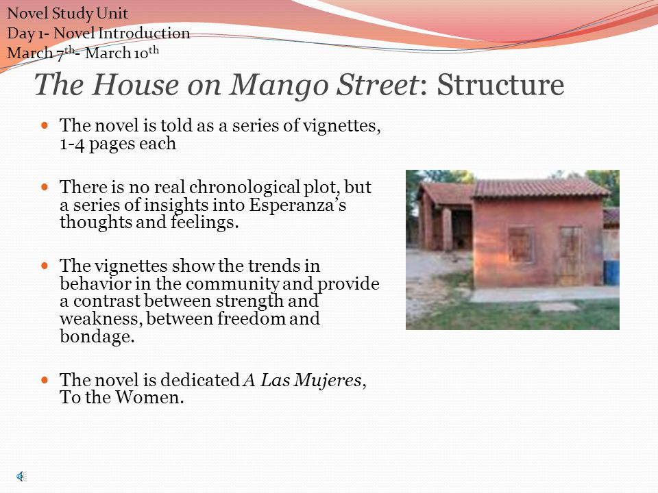 The House on Mango Street: Structure The novel is told as a series of vignettes, 1-4 pages each There is no real chronological plot, but a series of insights into Esperanza's thoughts and feelings.