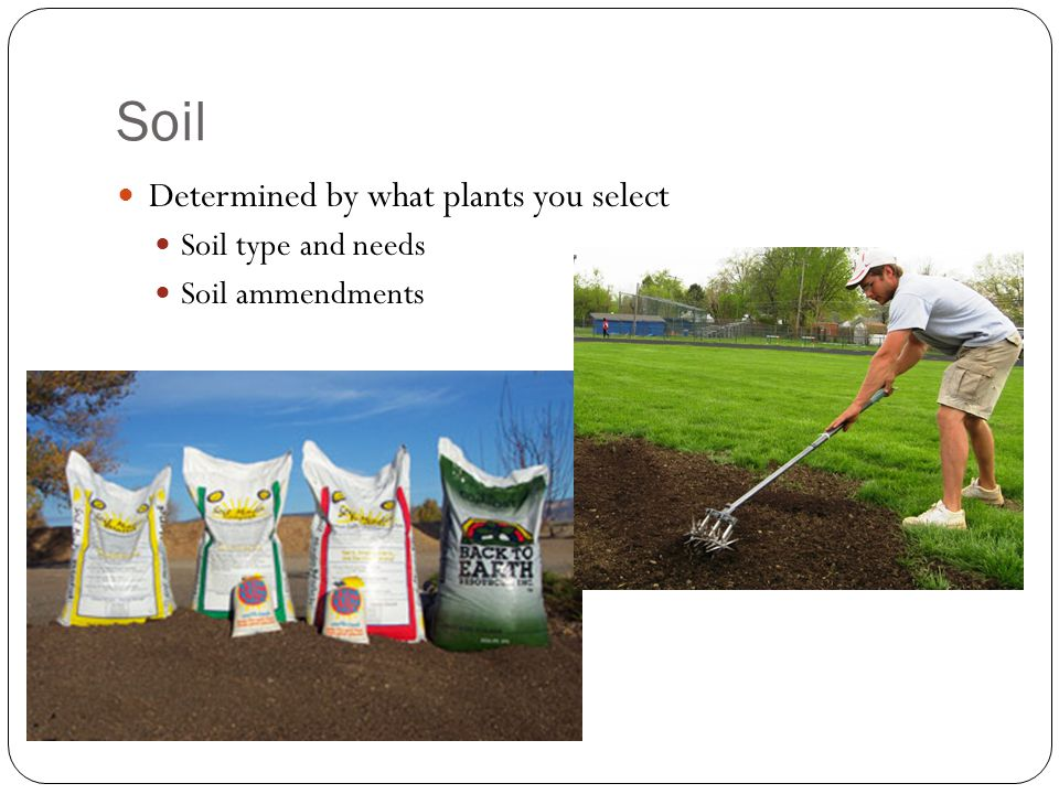 Soil Determined by what plants you select Soil type and needs Soil ammendments