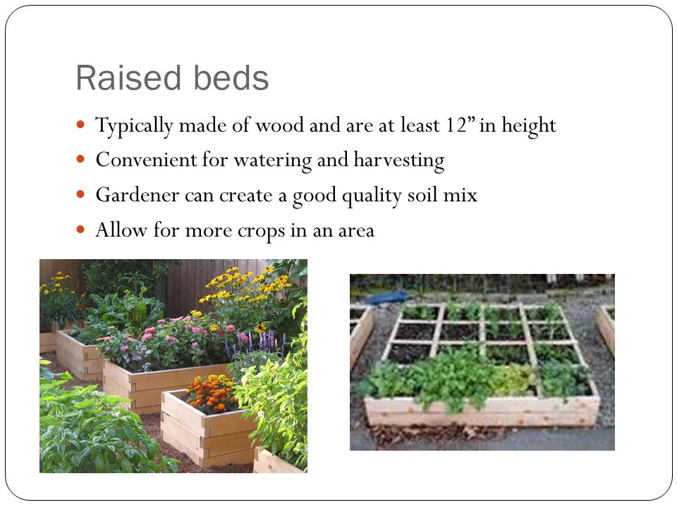 Raised beds continued Less soil compaction than in flatbed plantings Can be set up on any surface such as concrete patios or wood decks Can be built to make it accessible to elderly and handicap