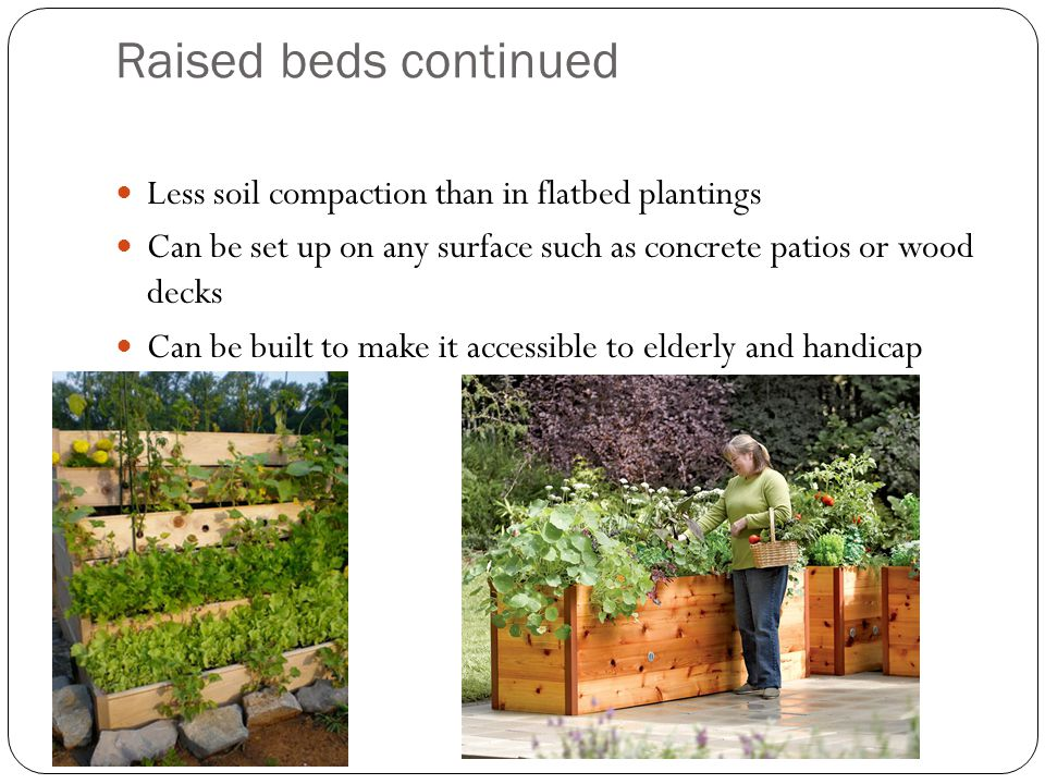 Raised beds continued Less soil compaction than in flatbed plantings Can be set up on any surface such as concrete patios or wood decks Can be built t