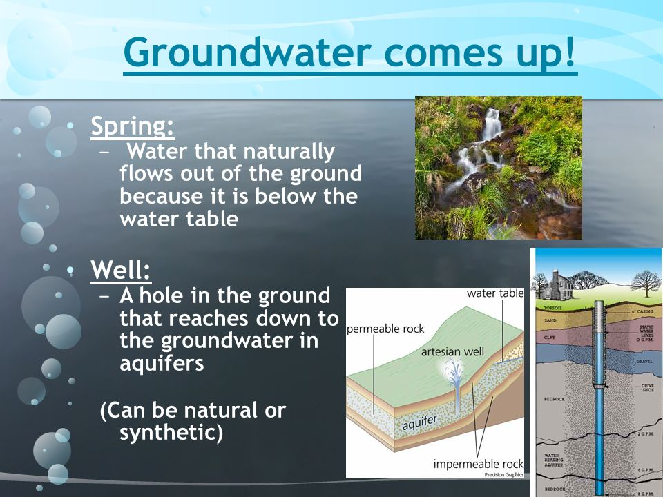 Groundwater comes up! Spring: − Water that naturally flows out of the ground because it is below the water table Well: − A hole in the ground that rea